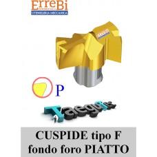 CUSPIDI TCD in affilatura F specifica per fondo foro PIATTO per PUNTE DRILL-RUSH